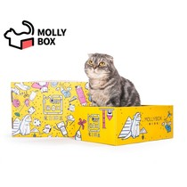 Official Mollybox Magic Cat box cat toy experience box cat grab box (Cat Grab Board box + 5 Toys)