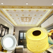 White Downlight 6 watts white light energy saving lamp integrated ceiling aluminum buckle plate open hole mounting LED lamp with light strip