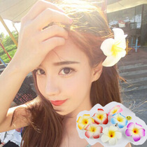 Seaside fresh sweet egg flower head flower brooch hairpin side hooded flower hair decorative colorful Headwear beach flower