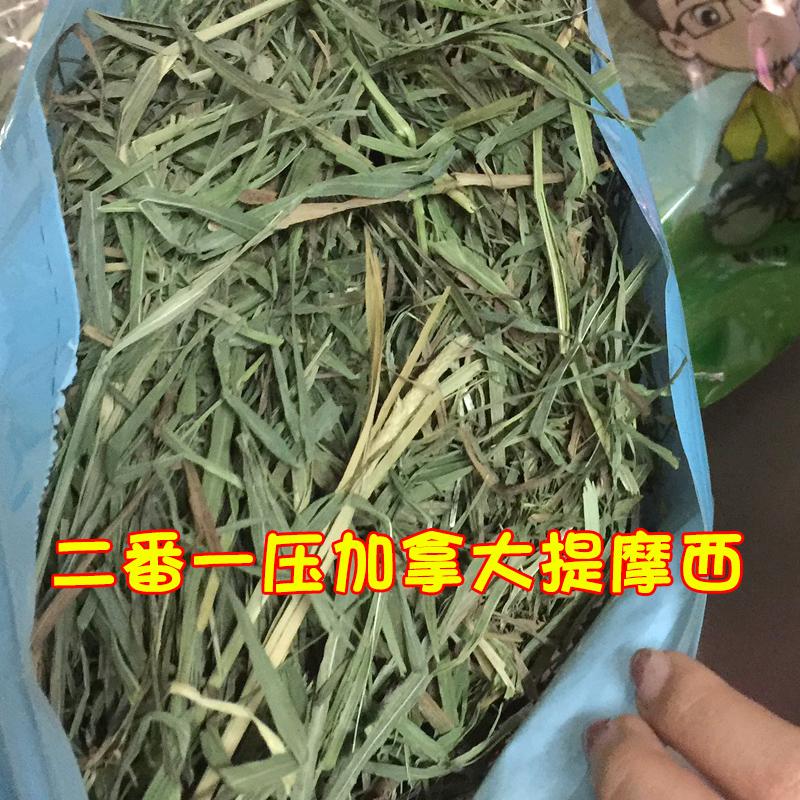 (Мягкий зеленый имеет мертвые листья) Канада импортирует два давления на Моисей кролика дракона кошки голландские свиньи травы