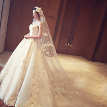 Long trailing champagne Korean version lace show skinny big size wedding dress