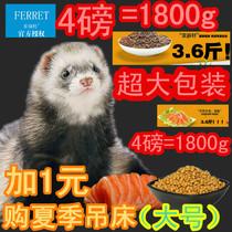 Machel Ferret animal de compagnie grain réel ténor gras 4.0 livres jeune dans l'âge entier de la petite limace de dragon universel