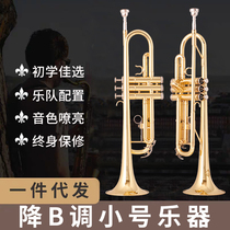 The new small instrument lower B tone three-tone small initial learning to play the test band to teach Western instruments