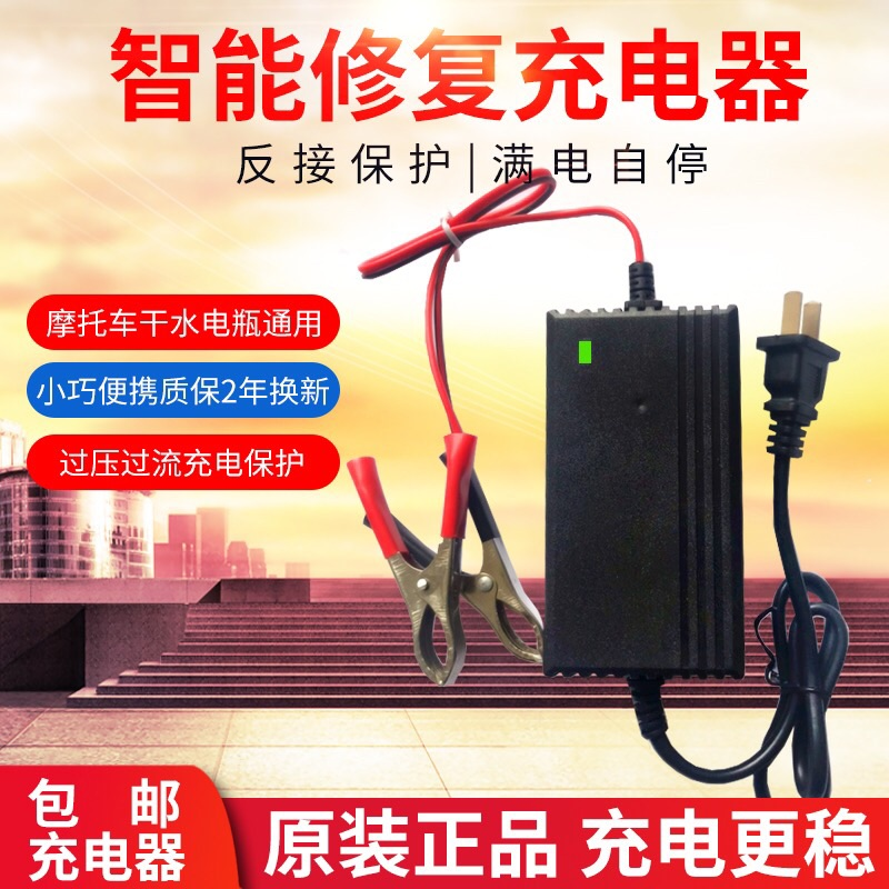 Smart 12V scooter battery charger 12 20AH battery repair charging machine dry water universal