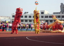 Shanghai Lion Dance Troupe: Celebration lion dance lion dance dance and lion dancing Dragon Show