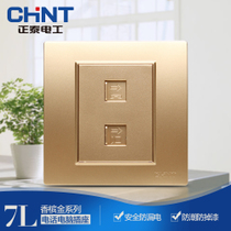 Zhengtai electrical steel frame wall switch socket panel NEW7L Champagne Gold telephone computer socket panel