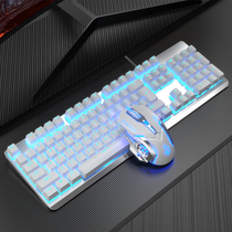 Shepherd mechanical keyboard mouse set group G800 blue axis black axis wired pen video game e-race dedicated
