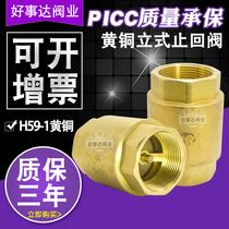 Copper vertical Check valve inverter valve SPRING check-valve toilet toilet water meter pump check valve 4 points