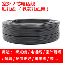 Jing Cheng outdoor Telephone Line 2 core hard wire tie cable tie fruit trees strong fastness outdoor iron wire 100 meters