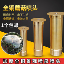 Thickened all-copper hemispheric mushroom fountain nozzle rockery water fountain waterscape Head water View fountain Nozzle