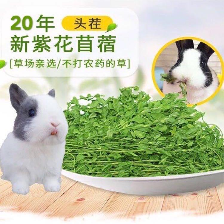 Альфальфа трава сено молодой кролик кролик зерна свежей сена кролика дракона кошки голландские свиньи корма пищи 1 кг