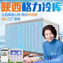 Ensemble complet de matériel de stockage à froid 220V petite unité de refroidissement tout-en-un installation de machine mobile de fruits et de légumes frais de stockage à froid