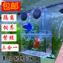 Peacock Fish Breeding box incubator box double-decker self-floating incubator fry tank outside small fish isolated delivery room bucket fish tank
