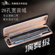 The 28 hole tremolo harmonica accent C senior middle school teaching aid adult professional musical instrument