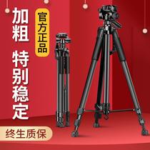 (Acier au carbone épaissi) trépied de caméra portable trépied SLR micro trépied unique photographie de téléphone portable etagère professionnelle adapté pour Canon Nikon support en direct pour la beauté et léclairage