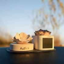 Mercedes-Benz car interior decoration lady web celebrity romantic flowers car aroma INS wind incense stone creative fragrance