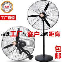 Jing Bao industrial fan powerful high-power factory machinery vertical floor fan commercial wall shaking his head horns fan