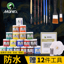 Acrylic Pigment Marley 24 color set beginner acrylic painting pigment hand painted textile wall painting anti-Shubing rare children students practice acrylic pigment art color Painting set