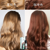 2019 popular color hair dye plant pure bubble foam net red own home hair dye cream goddess a comb color