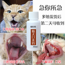 Canine Stomatitis Special Effect spray cat drooling oral inflammation bad breath gingivitis cat Dog General Stomatitis Spray