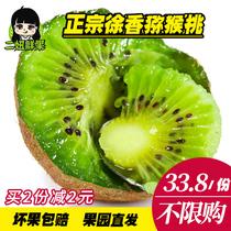 Two chicks authentic Jiangshan Xu Xiang Kiwi green heart kiwifruit fresh season fruit gift Box 5 Jin