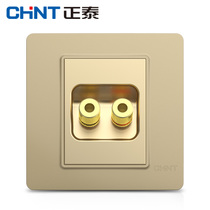 Zhengtai Switch Socket NEW7i Champagne Gold Two-hole Audio Socket Two-way Audio