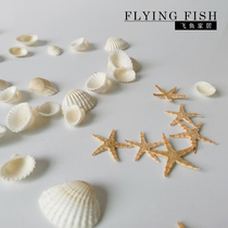 DIY Crystal candle shell starfish mini shell Starfish Decoration