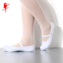 Red Dance shoes Dance shoes female canvas Korean dance shoes indoor soft bottom national dance fresh practice shoes 10053