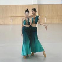 Dai dance performance clothing practice dress female Dai dance skirt peacock dance fish tail skirt art Test clothing