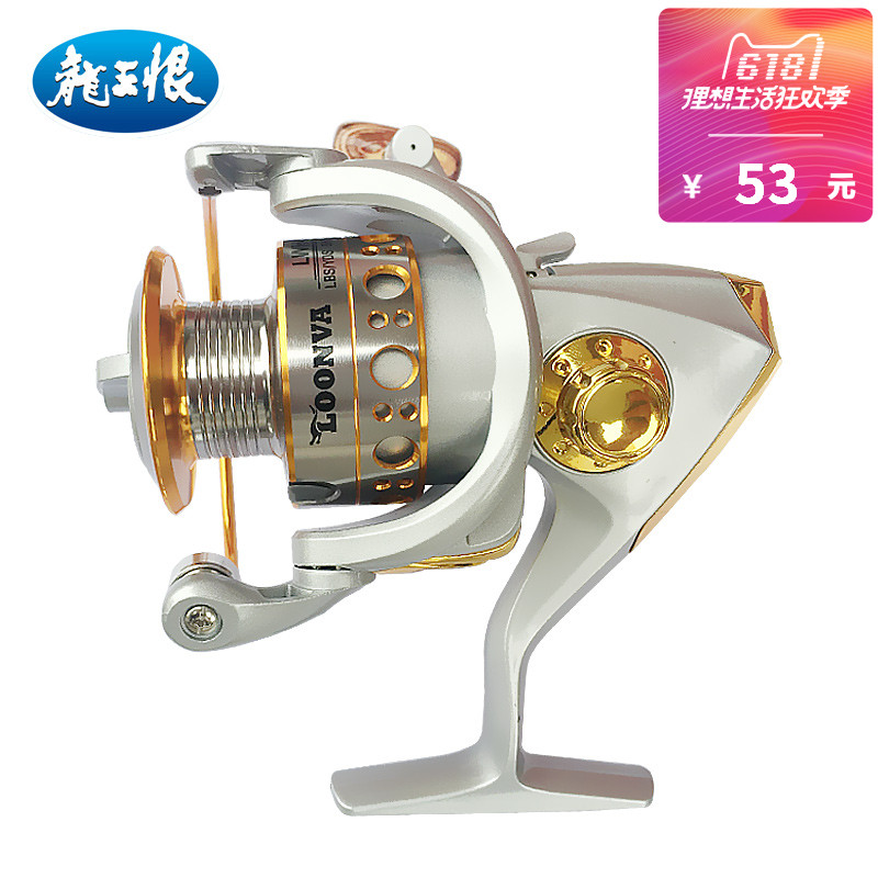 Dragon King hate Sea squid reel Straight shank road Aachen Reel 2000/3000/4000 8 Spindle Wheel