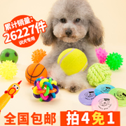 Pet dog toy ball sound bite training Tactic molar Bichon puppy dog chews cat toys