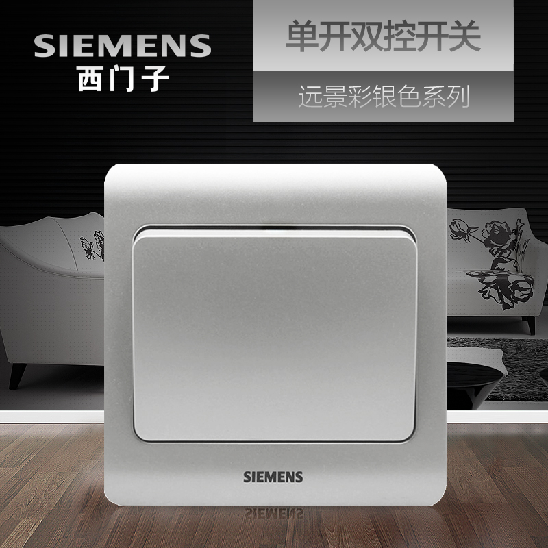 Siemens Single Open Double Control Switch Socket Panel Vision Color Silver Household Electric Lamp Power Supply Wall Open Switch