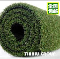 Golf green Artificial Lawn simulation lawn goalball encryption plastic artificial fake grass putter practice carpet