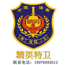 Protection Service Security Services