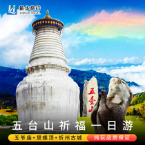 Wutaishan Day Trip Boutique small group empty stomach Wuge Temple Small Chaotai Taiyuan to Shanxi tourism includes tickets.