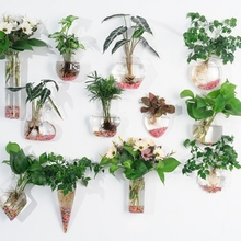 Creative water culture glass vase hanging transparent flowerpot green radish wall hanging small fish tank simple modern small vase