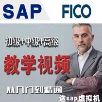 销量过百 SAP FICO财务模块FI财务CO成本